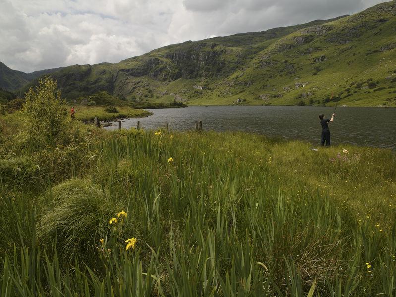 Gougane Barra Forest Park (Foto: Tourism Ireland)